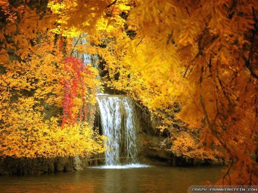 106927-nature-beautiful-autumn-amazing